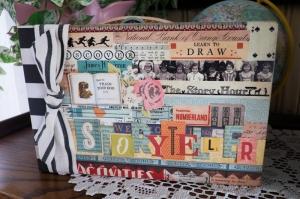 StoryTeller Book cover